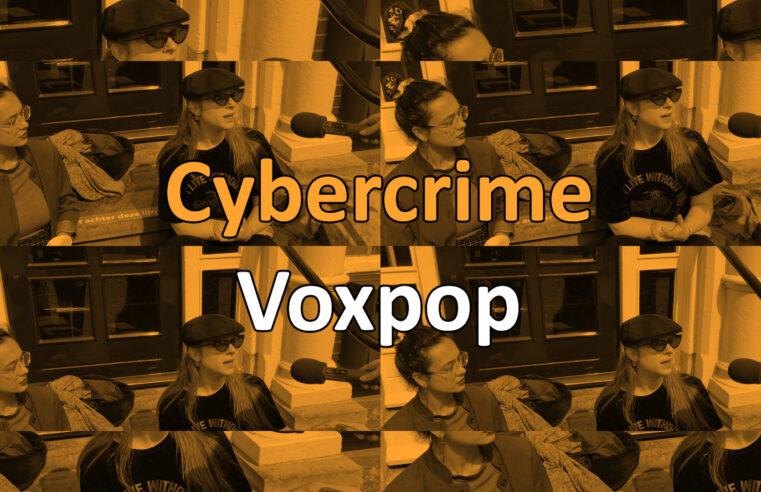 Video | Hoe bewust zijn inwoners van Overijssel bezig met online veiligheid?